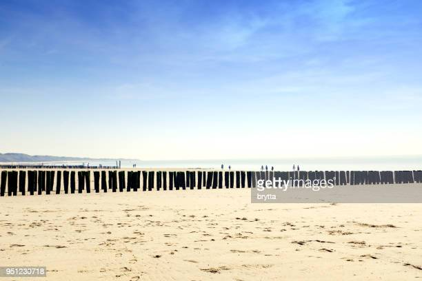 row of wooden poles at the beach in zoutelande, zeeland, netherlands - zeeland stock pictures, royalty-free photos & images