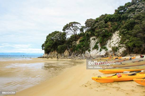 Row of yellow kayaks on the beach, Mosquito Bay, Abel Tasman National Park, New Zealand