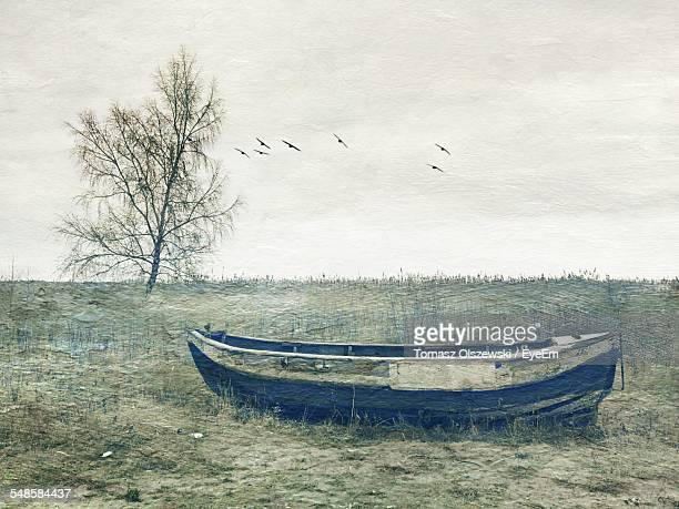 rowboat in meadow with lone tree and flying birds - fine art stock pictures, royalty-free photos & images