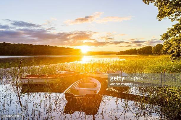 Rowboats at sunset