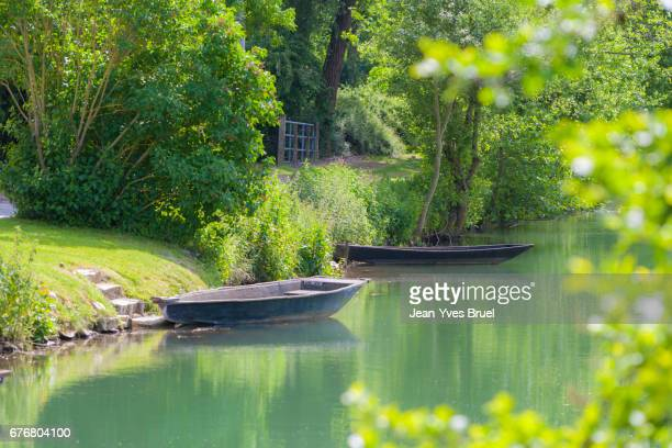 rowboats in marsh - salt_marsh stock pictures, royalty-free photos & images