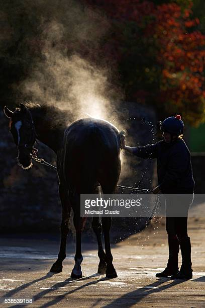 Rowena Smyth washes Bilbrook Blaze at Sandhill Racing Stables on October 20 2015 in Minehead England Sandhill Racing Stables set in 500 hundred acres...