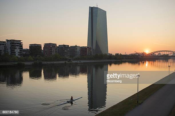 A rower paddles on the River Main as the skyscraper headquarters of the European Central Bank stands beyond as the sun rises in Frankfurt Germany on...