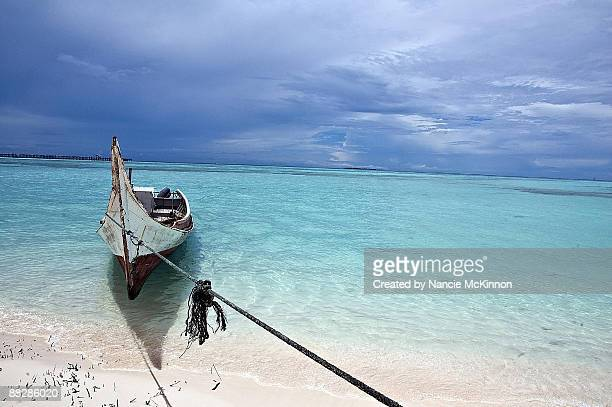 rowing boat moored on coast - ilha de mabul imagens e fotografias de stock