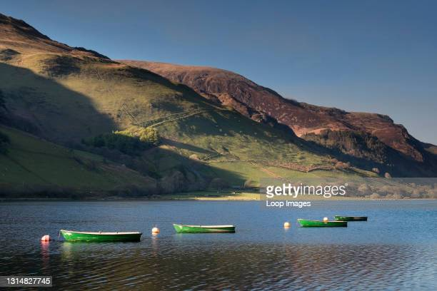 Rowing boats on Tal y llyn Lake with the lower slopes of Cadair Idris beyond.