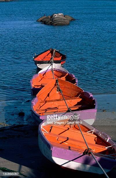 rowing boats, west coast, south_afrika - afrika afrika stock pictures, royalty-free photos & images