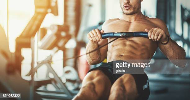 übung rudern. - muskel stock-fotos und bilder
