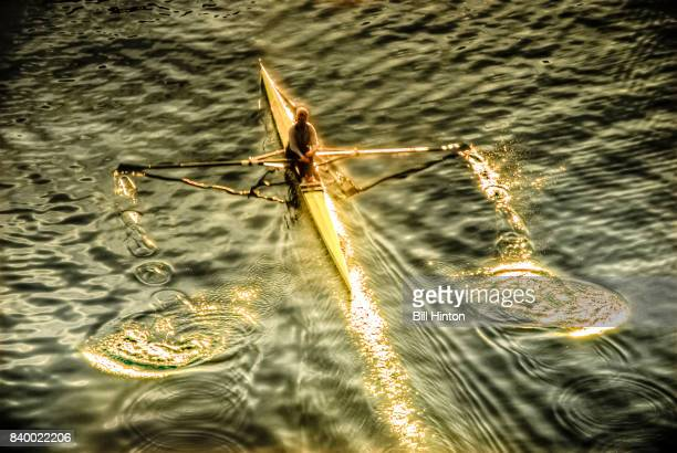 Rowing scull at sunset