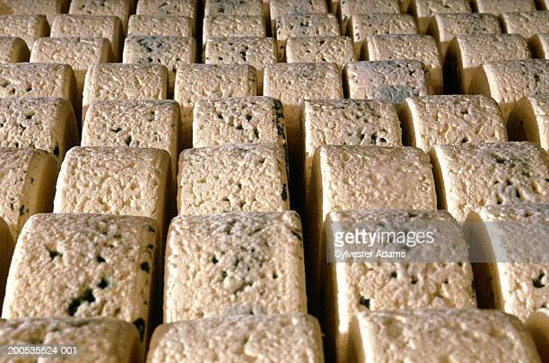Rows of aging Roquefort cheese