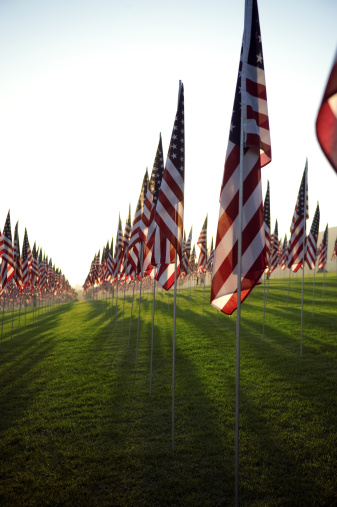 Rows of American flags with the sun behind them 157673917