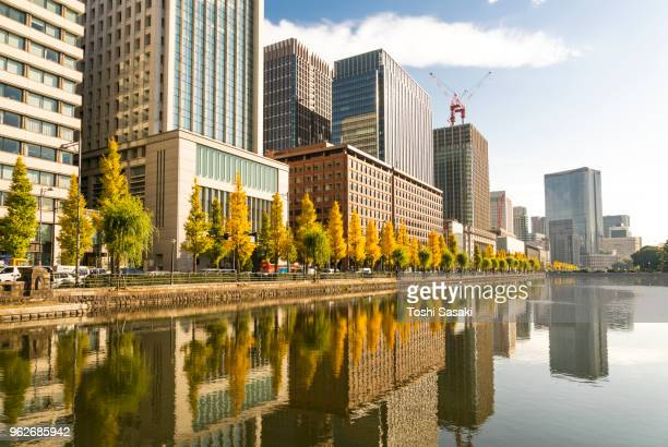 Rows of autumn leaves Ginkgo trees and rows of Marunouchi financial district high-rise buildings reflect to the Imperial Moat, which stand along the Imperial Moat at Marunouchi Tokyo Japan on November 25 2017.