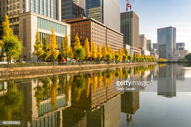 rows of autumn leaves ginkgo trees, rows of high-rise buildings along the imperial moat and clouds in the sky reflect to the imperial moat in the marunouchi financial district at chiyoda tokyo japan on november 25 2017. - imperial palace tokyo stock pictures, royalty-free photos & images