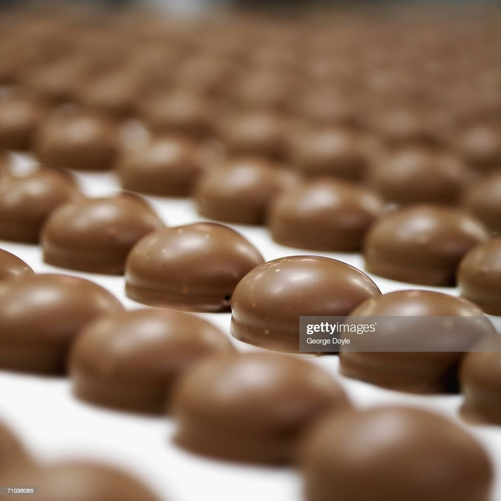 Rows of chocolate biscuits : Stock Photo