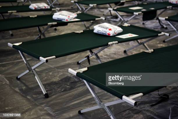 Rows of cots sit at an American Red Cross shelter for evacuees ahead of Hurricane Florence at East Mecklenburg High School in Charlotte North...
