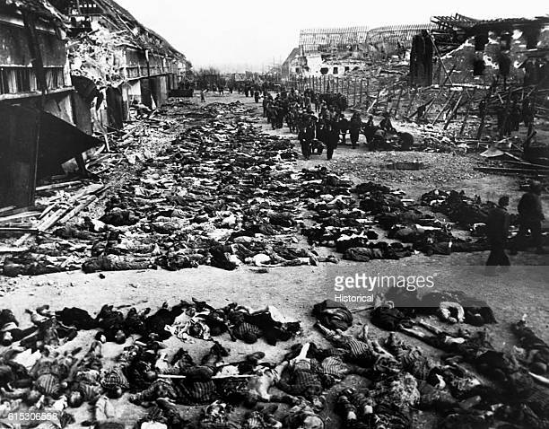 Rows of dead inmates fill the yard of the MittelbauDora concentration camp at Nordhausen Germany following the camp's liberation by US troops These...