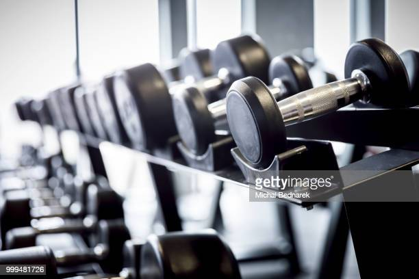 Rows of dumbbells on a rack in the gym.