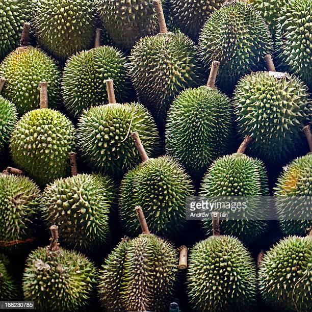 Rows of Durians