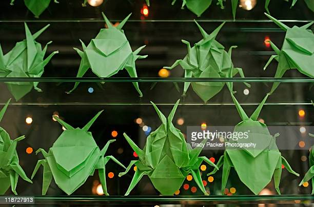 Rows of green origami beetles on glass shelves