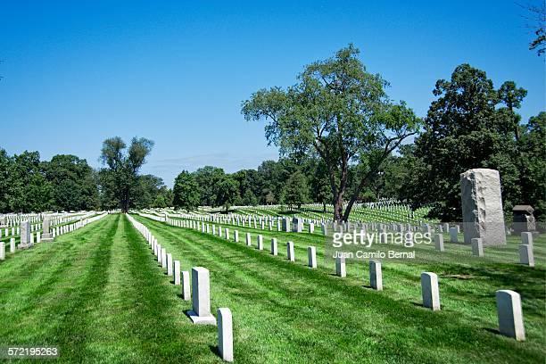rows of headstones in arlington national cemetery - größere sehenswürdigkeit stock-fotos und bilder
