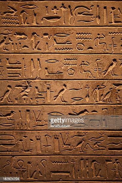 7 rows of hieroglyphics on wall