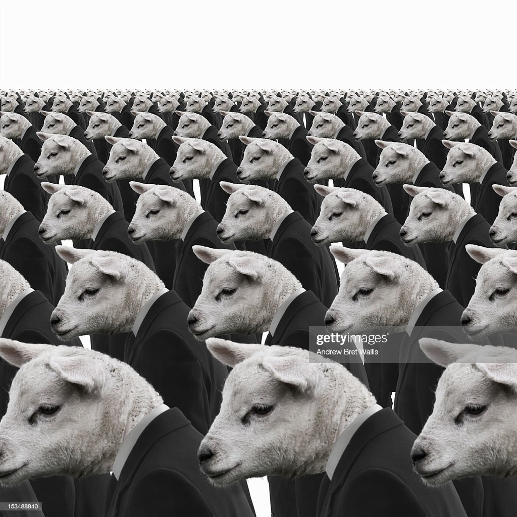 Rows of identical sheep dressed as businessmen : Stock Photo