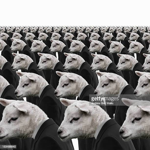 Rows of identical sheep dressed as businessmen