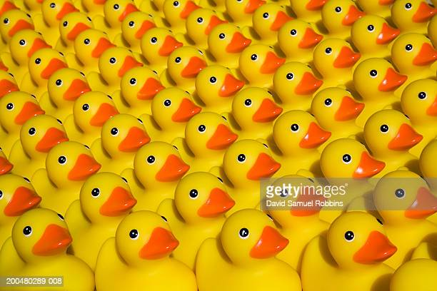 Rows of rubber ducks, close-up, full frame