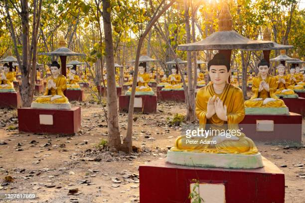 rows of sitting buddhas, bodhi tataung, monywa, myanmar - peter adams stock pictures, royalty-free photos & images