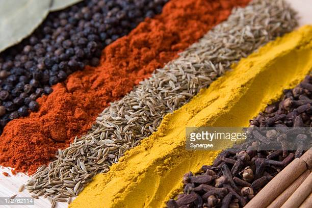 rows of spices 3 - spice stock pictures, royalty-free photos & images