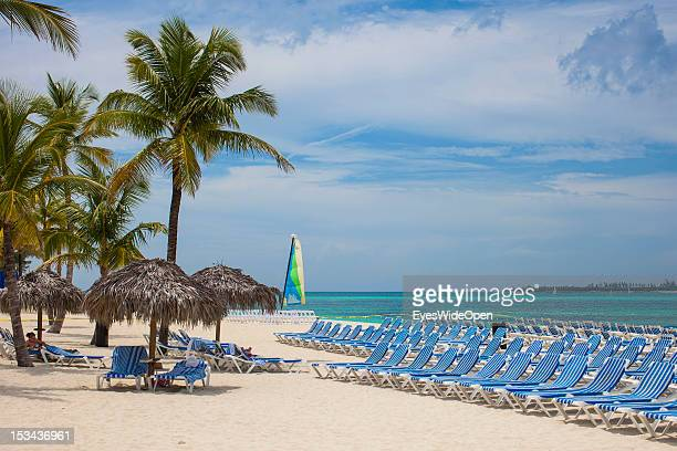 Rows of sunbeds and coconut palmtrees at the beach on June 15, 2012 in Nassau, The Bahamas.