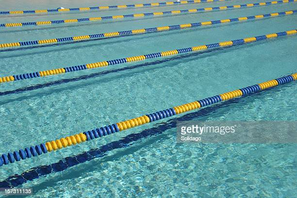 rows of swim lanes - length stock pictures, royalty-free photos & images