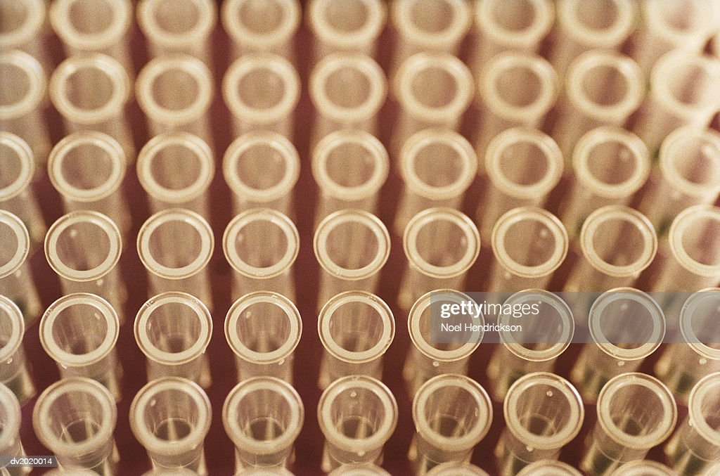 Rows of Test Tubes : Stock Photo