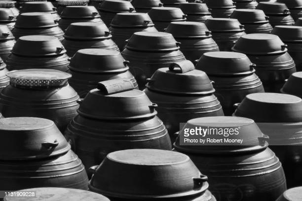 rows of traditional korean fermentation pots (onggi), used to make kimchi and other foods - korean culture stock pictures, royalty-free photos & images