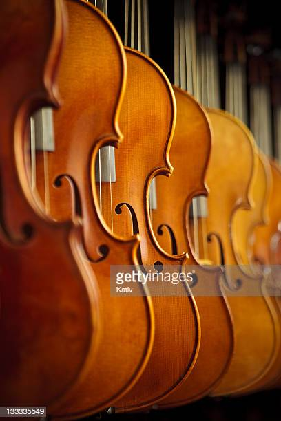 rows of violins - violin family stock photos and pictures