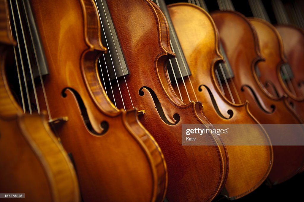 Rows of violins : Stock Photo