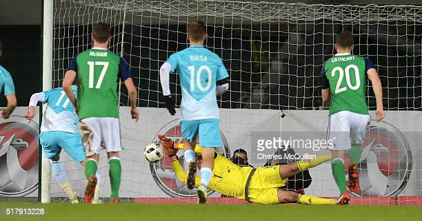 Roy Carroll of Northern Ireland saves a penalty from Novakovic Milivoje of Slovenia during the international friendly between Northern Ireland and...