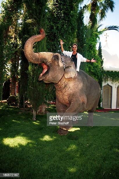 Roy Homestory DschungelPalast Las Vegas/Nevada/USA Elefant Gildah Tier Tiere Tieren Palmen Pool Schwimmbecken Rasen Garten