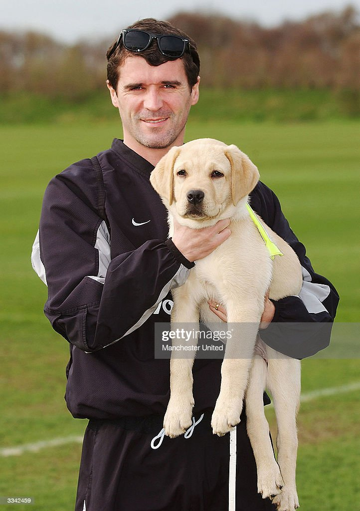 Roy Keane Of Manchester United Poses With A Guide Dog As Part Of The News Photo Getty Images
