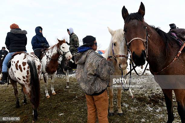 Roy Murphy, right, and his friends get their horses prepared for a ride through Oceti Sakowin Camp on the edge of the Standing Rock Sioux Reservation...