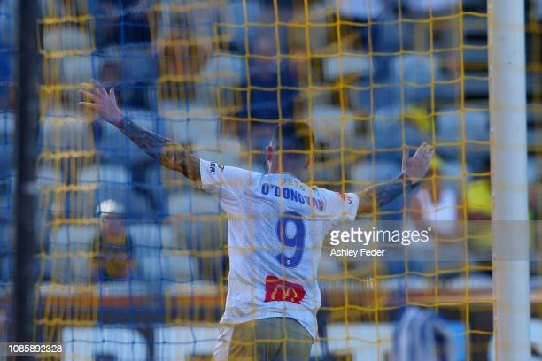 Roy O'Donovan of the Jets celebrates a goal during the round nine ALeague match between the Central Coast Mariners and the Newcastle Jets at Central...