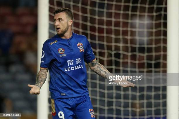 Roy O'Donovan of the Newcastle Jets reacts to a decision during the round 10 ALeague match between the Newcastle Jets and Adelaide United at McDonald...