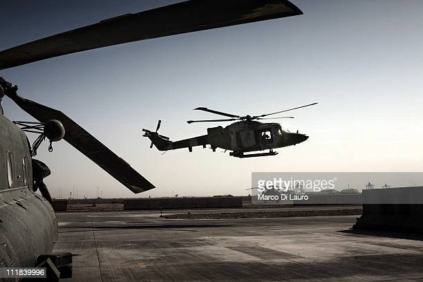 Royal Air Force Lynx AH7 helicopter is seen landing next to the MERT CH-47 Chinook helicopter at the flight line in Camp Bastion on November 23, 2009...