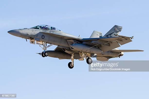 a royal australian air force f/a-18f super hornet prepares for landing. - オーストラリア空軍 ストックフォトと画像