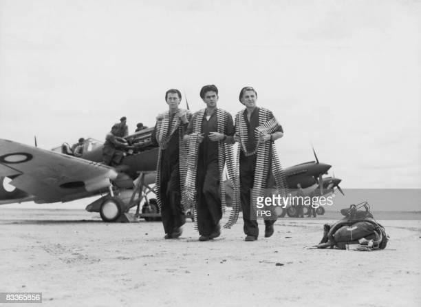 Royal Australian Air Force mechanics carrying ammunition belts for Curtiss P-40 Kittyhawk fighters at an Australian airfield, circa 1943.
