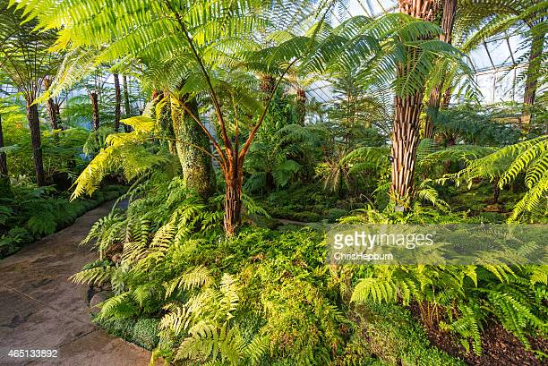 Jardins botaniques royaux, Édimbourg, en Écosse, au Royaume-Uni