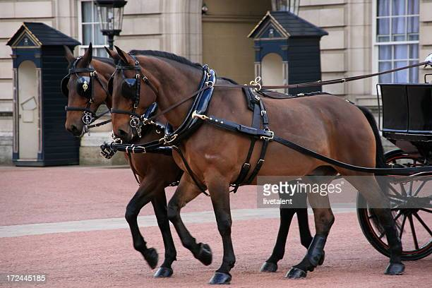 Royal Carriage and horses leaving Buckingham Palace