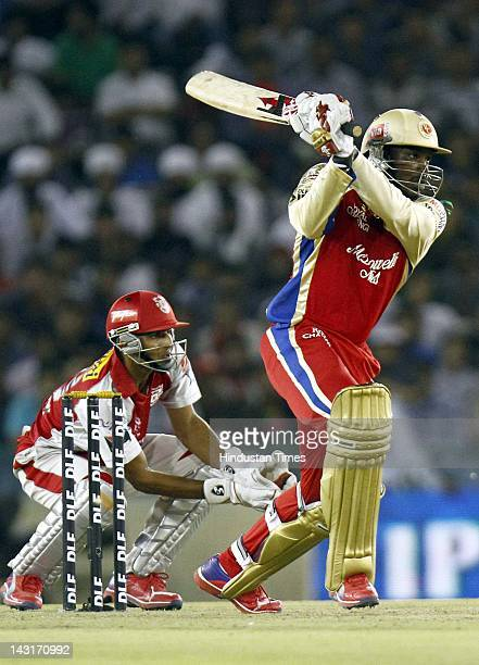 Royal Challengers Bangalore batsman Chris Gayle plays a shot during IPL5 T20 Cricket match played between Kings XI Punjab and Royal Challengers...