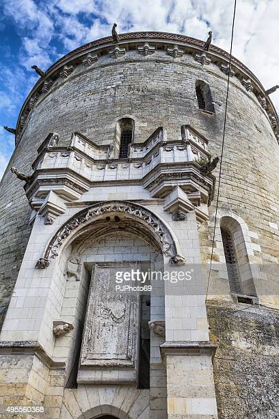royal chateau de amboise - france - pjphoto69 stock pictures, royalty-free photos & images