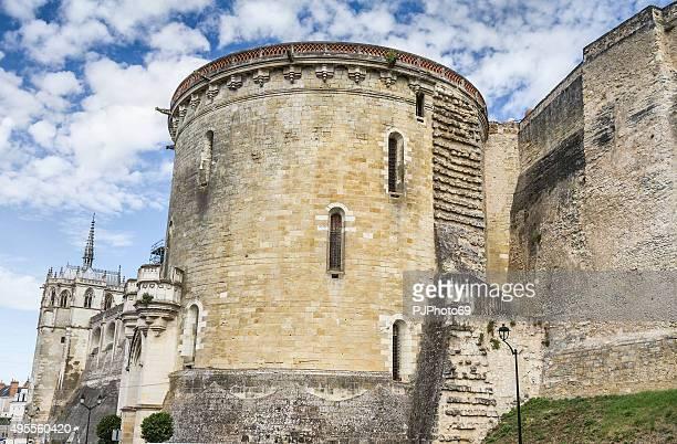 royal castillo de amboise-francia - pjphoto69 fotografías e imágenes de stock