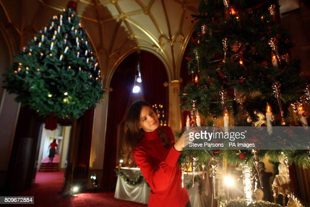 Royal Collection Staff member Rachel Woolen puts the finishing touches to a Christmas tree which at Windsor Castle. The tree is part recreation of...